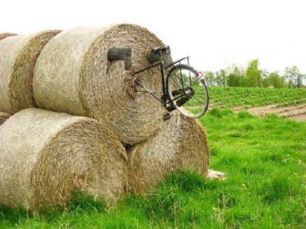 ce5679ac34de09da2d679ed83c6f3f95--bike-humor-cool-bikes.jpg